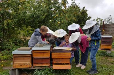 Erweiterungsbau im Bienengarten LEADER-Projekt 2018
