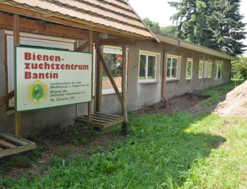 02 Umgestaltung des Bienenzuchtzentrums zum Apineum